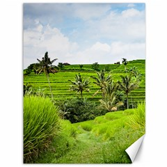 Bali Rice Terraces Landscape Rice Canvas 36  X 48