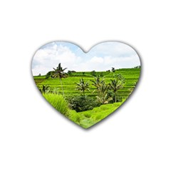 Bali Rice Terraces Landscape Rice Heart Coaster (4 Pack)  by Nexatart