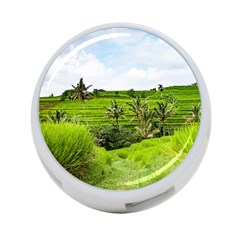 Bali Rice Terraces Landscape Rice 4 Port Usb Hub (one Side) by Nexatart