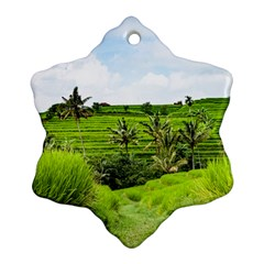 Bali Rice Terraces Landscape Rice Snowflake Ornament (two Sides)