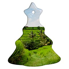 Bali Rice Terraces Landscape Rice Christmas Tree Ornament (two Sides)