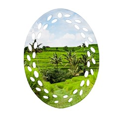 Bali Rice Terraces Landscape Rice Oval Filigree Ornament (two Sides) by Nexatart