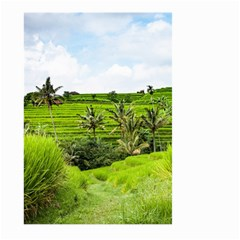 Bali Rice Terraces Landscape Rice Large Garden Flag (two Sides) by Nexatart