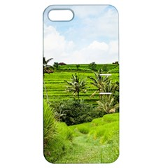 Bali Rice Terraces Landscape Rice Apple Iphone 5 Hardshell Case With Stand by Nexatart