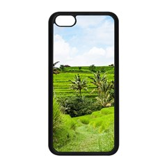 Bali Rice Terraces Landscape Rice Apple Iphone 5c Seamless Case (black) by Nexatart