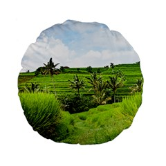 Bali Rice Terraces Landscape Rice Standard 15  Premium Flano Round Cushions