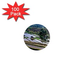Rice Terrace Rice Fields 1  Mini Magnets (100 Pack)  by Nexatart