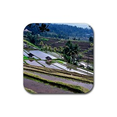 Rice Terrace Rice Fields Rubber Square Coaster (4 Pack)  by Nexatart