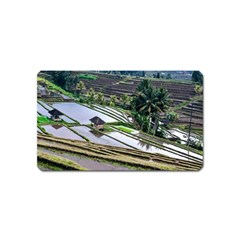 Rice Terrace Rice Fields Magnet (name Card) by Nexatart