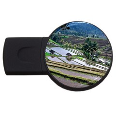 Rice Terrace Rice Fields Usb Flash Drive Round (2 Gb)
