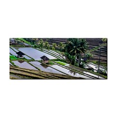 Rice Terrace Rice Fields Cosmetic Storage Cases