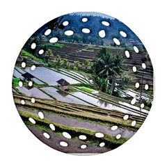 Rice Terrace Rice Fields Ornament (round Filigree) by Nexatart