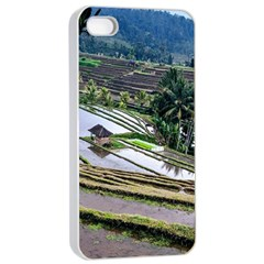 Rice Terrace Rice Fields Apple Iphone 4/4s Seamless Case (white)