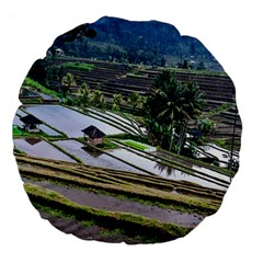 Rice Terrace Rice Fields Large 18  Premium Round Cushions by Nexatart