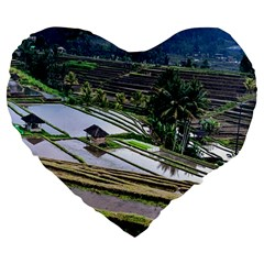 Rice Terrace Rice Fields Large 19  Premium Flano Heart Shape Cushions by Nexatart