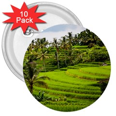 Rice Terrace Terraces 3  Buttons (10 Pack)