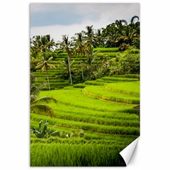 Rice Terrace Terraces Canvas 24  X 36