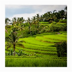 Rice Terrace Terraces Medium Glasses Cloth (2 Side)