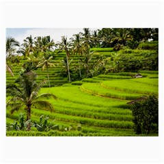 Rice Terrace Terraces Large Glasses Cloth (2 Side) by Nexatart