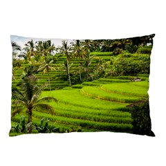 Rice Terrace Terraces Pillow Case