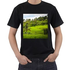 Rice Terrace Terraces Men s T Shirt (black)