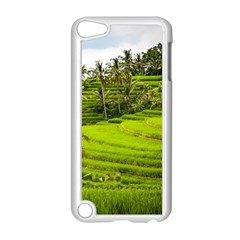 Rice Terrace Terraces Apple Ipod Touch 5 Case (white)