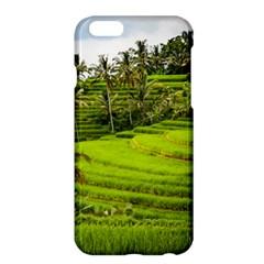 Rice Terrace Terraces Apple Iphone 6 Plus/6s Plus Hardshell Case