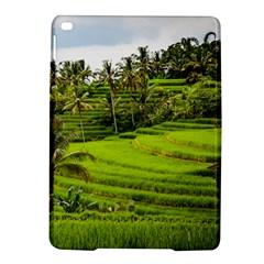 Rice Terrace Terraces Ipad Air 2 Hardshell Cases