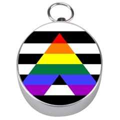 Straight Ally Flag Silver Compasses by Valentinaart