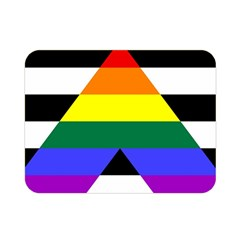 Straight Ally Flag Double Sided Flano Blanket (mini)  by Valentinaart