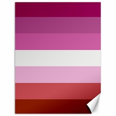 Lesbian Pride Flag Canvas 18  X 24   by Valentinaart