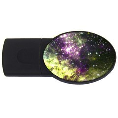 Space Colors Usb Flash Drive Oval (2 Gb) by ValentinaDesign