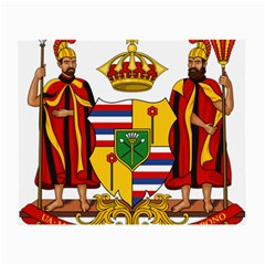 Kingdom Of Hawaii Coat Of Arms, 1795 1850 Small Glasses Cloth by abbeyz71