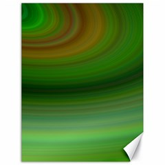 Green Background Elliptical Canvas 18  X 24
