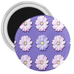 Daisy Flowers Wild Flowers Bloom 3  Magnets