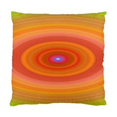 Ellipse Background Orange Oval Standard Cushion Case (two Sides)