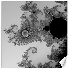 Apple Males Mandelbrot Abstract Canvas 16  X 16   by Nexatart