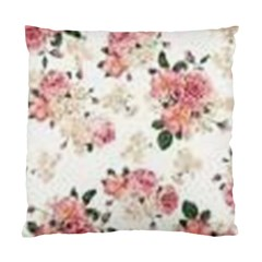 Downloadv Standard Cushion Case (one Side) by MaryIllustrations