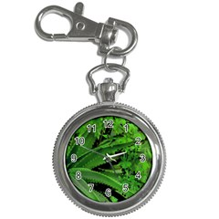 Vivid Tropical Design Key Chain Watches