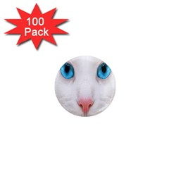 Beautiful White Face Cat Animals Blue Eye 1  Mini Magnets (100 Pack)  by Mariart