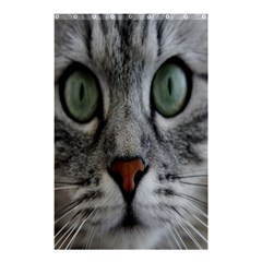 Cat Face Eyes Gray Fluffy Cute Animals Shower Curtain 48  X 72  (small)  by Mariart