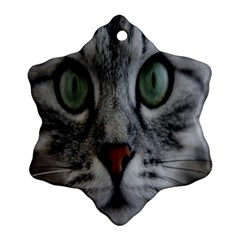 Cat Face Eyes Gray Fluffy Cute Animals Snowflake Ornament (two Sides) by Mariart
