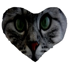 Cat Face Eyes Gray Fluffy Cute Animals Large 19  Premium Heart Shape Cushions by Mariart