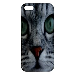 Cat Face Eyes Gray Fluffy Cute Animals Iphone 5s/ Se Premium Hardshell Case by Mariart