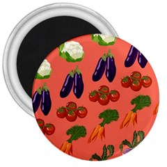 Vegetable Carrot Tomato Pumpkin Eggplant 3  Magnets by Mariart