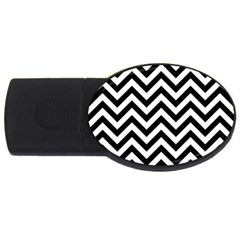 Wave Background Fashion Usb Flash Drive Oval (2 Gb)