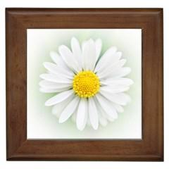 Art Daisy Flower Art Flower Deco Framed Tiles