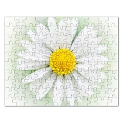 Art Daisy Flower Art Flower Deco Rectangular Jigsaw Puzzl