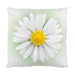 Art Daisy Flower Art Flower Deco Standard Cushion Case (two Sides) by Nexatart