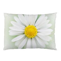 Art Daisy Flower Art Flower Deco Pillow Case by Nexatart